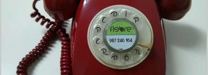 Cabecera teléfono pedidos Vermouth Perdón